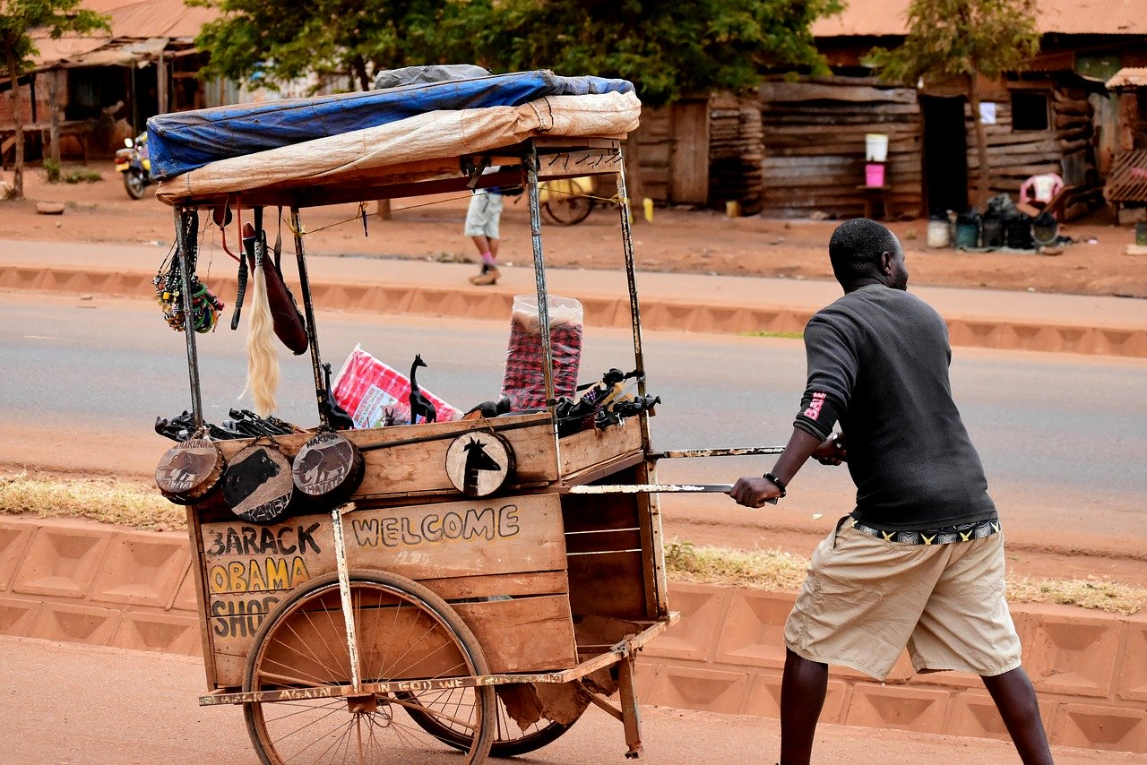Les meilleurs ittinéraires pour visiter la Tanzanie